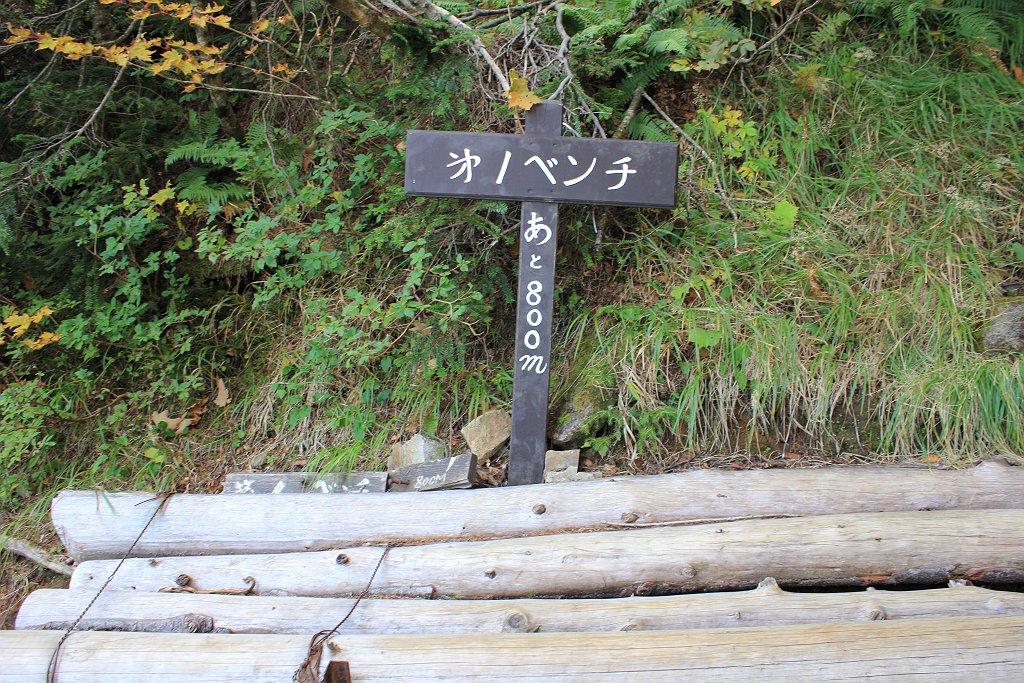 最後の登り最初のベンチ。最終水場からここまでも長かった