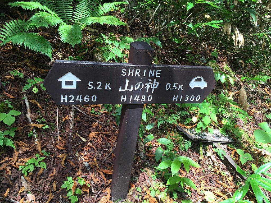 長い下りの最後に山の神に到着。ここで標高表記がおかしなことに気付く。一の沢の標高が1323mに対して、30分もかからない山の神が1480mと標高差150m!?国土地理院の地図みてもおかしい。1380mの間違いでは!?
