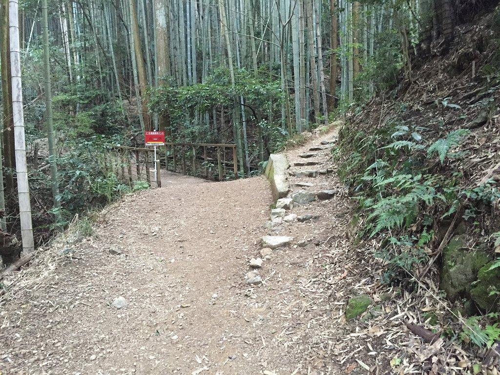 これを右にいくと急斜面なしに稜線にでるけど、急斜面だけど奥の山展望広場の最短は左なので左へいく