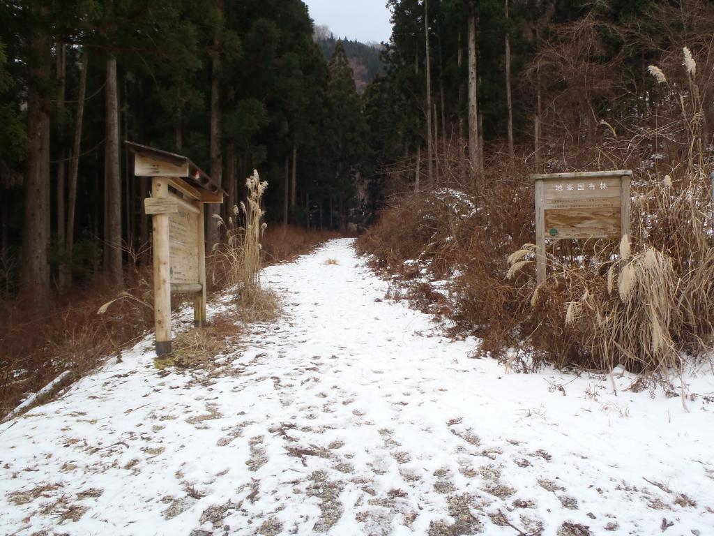 金引橋分岐に到着。相変わらず長い林道だった・・・何度歩いてもこの長さには慣れないな