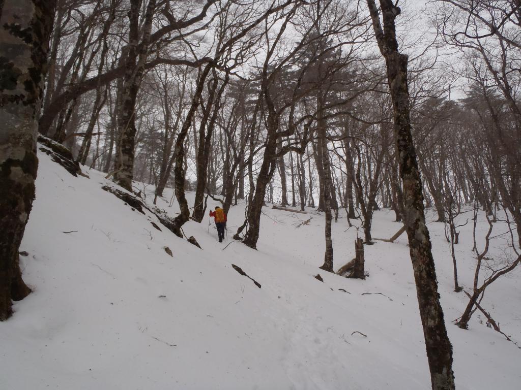 稜線手前は急登で雪の量も増えてきてるけど、この時期なのにやっぱ雪の量は少ない