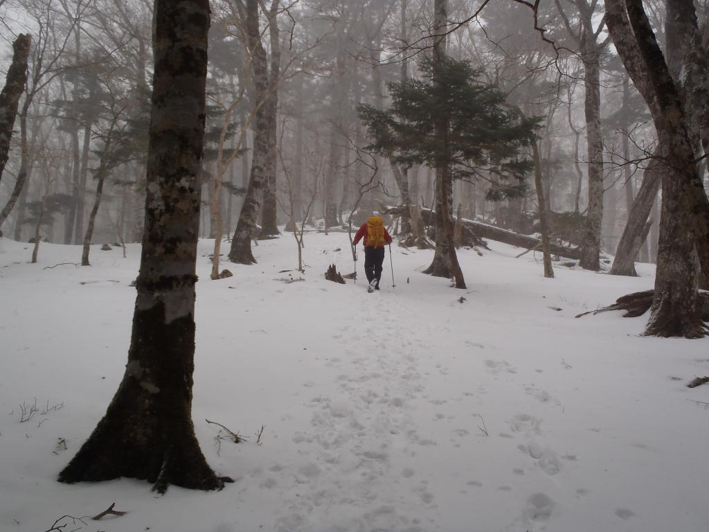 かなり吹雪いてきた
