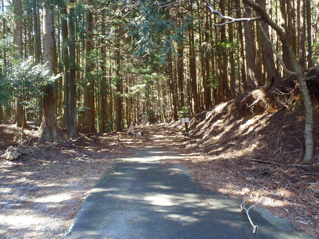 ここから林道は関係者以外立ち入り禁止らしいので歩いてスタート