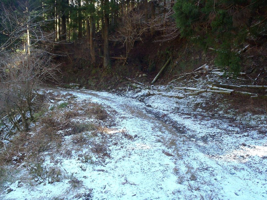 林道のところどころは雪が残っていた