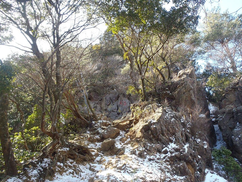 ここから標高100mほどかなり急登になる。というより、むしろ岩を登るが正しいのかも