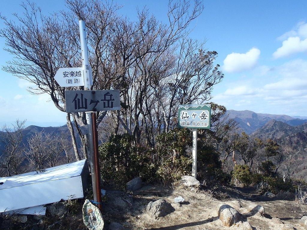 晴れた日の仙ヶ岳(961m)に到着。 前の山頂は吹雪だったけど、今回は晴れてよかった