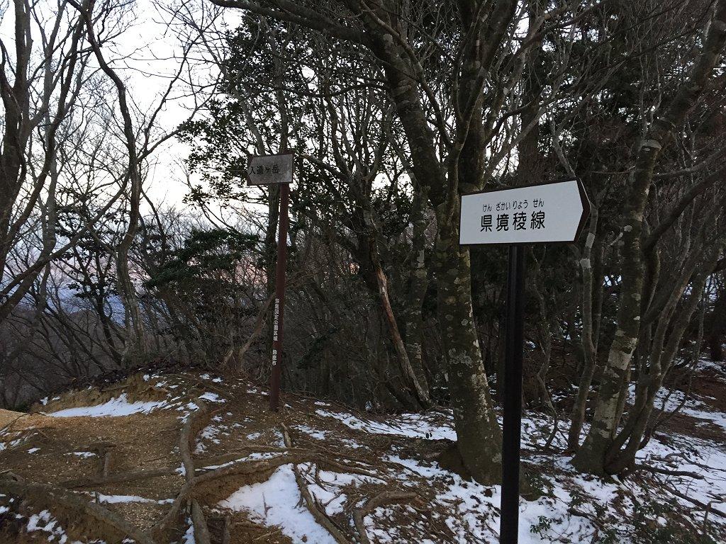 県境稜線。ここまでせっかく必死に登ってきたのに一回下らされる