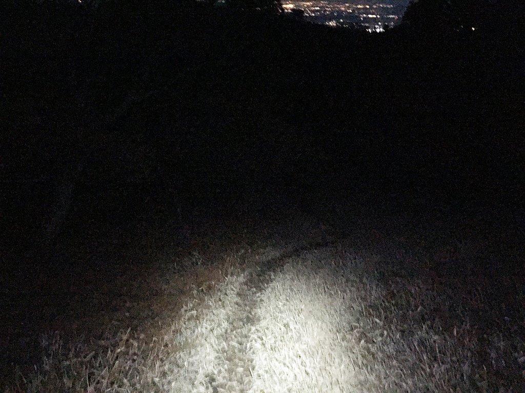 入道ヶ岳の草原地帯だがもう真っ暗