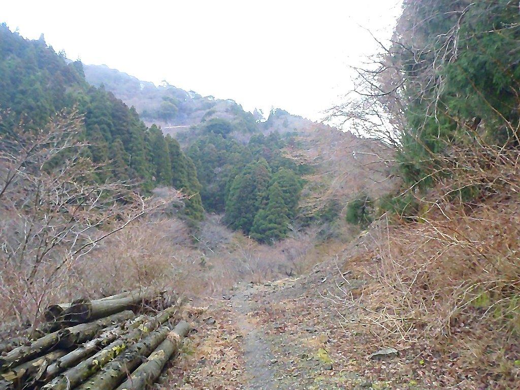 ひたすら林道をまっすぐ