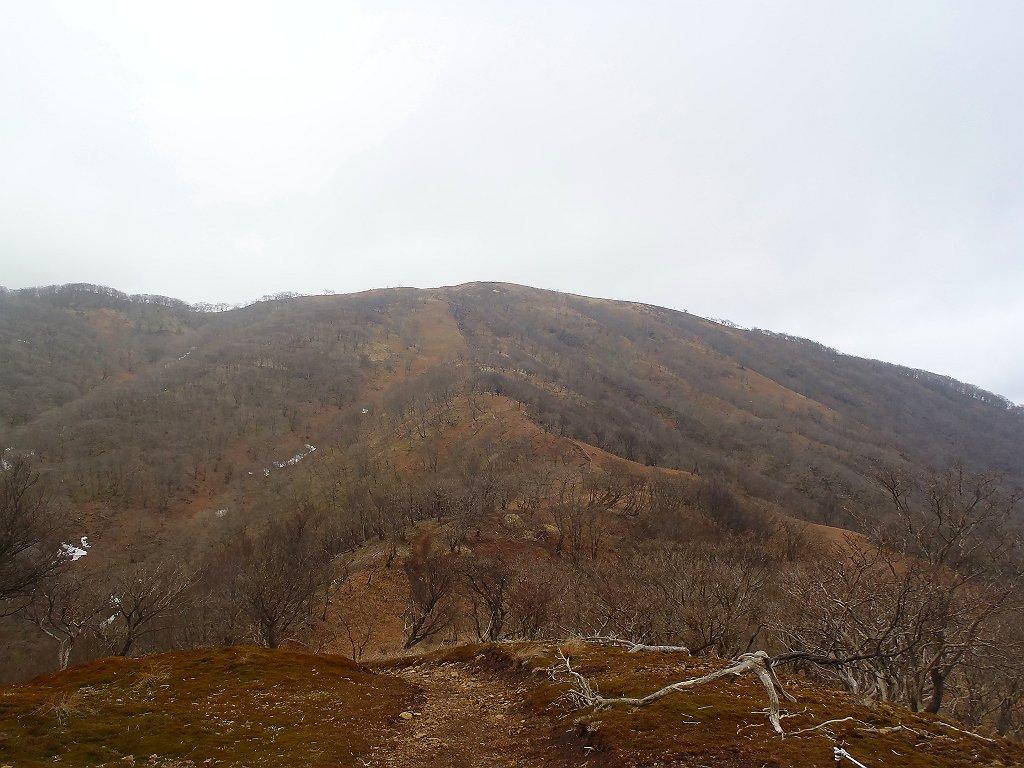 ここでワンピークで最後の鈴北岳への登りになる