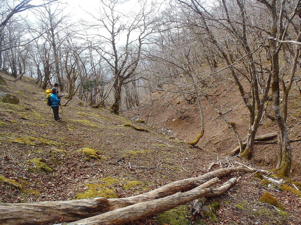 谷はもはや道なき道だったので左側の尾根から降りていく