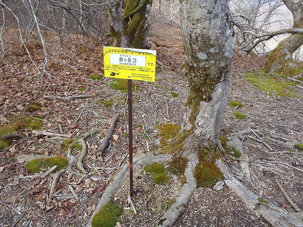 ヒルコバ。結局ここで御池谷ルートで降りるか話し合った結果、時間も押してたので沢ルートはやめて、鈴ケ岳へ登り、その向こう側の林道で下ることになったが、これがとんでもないことに