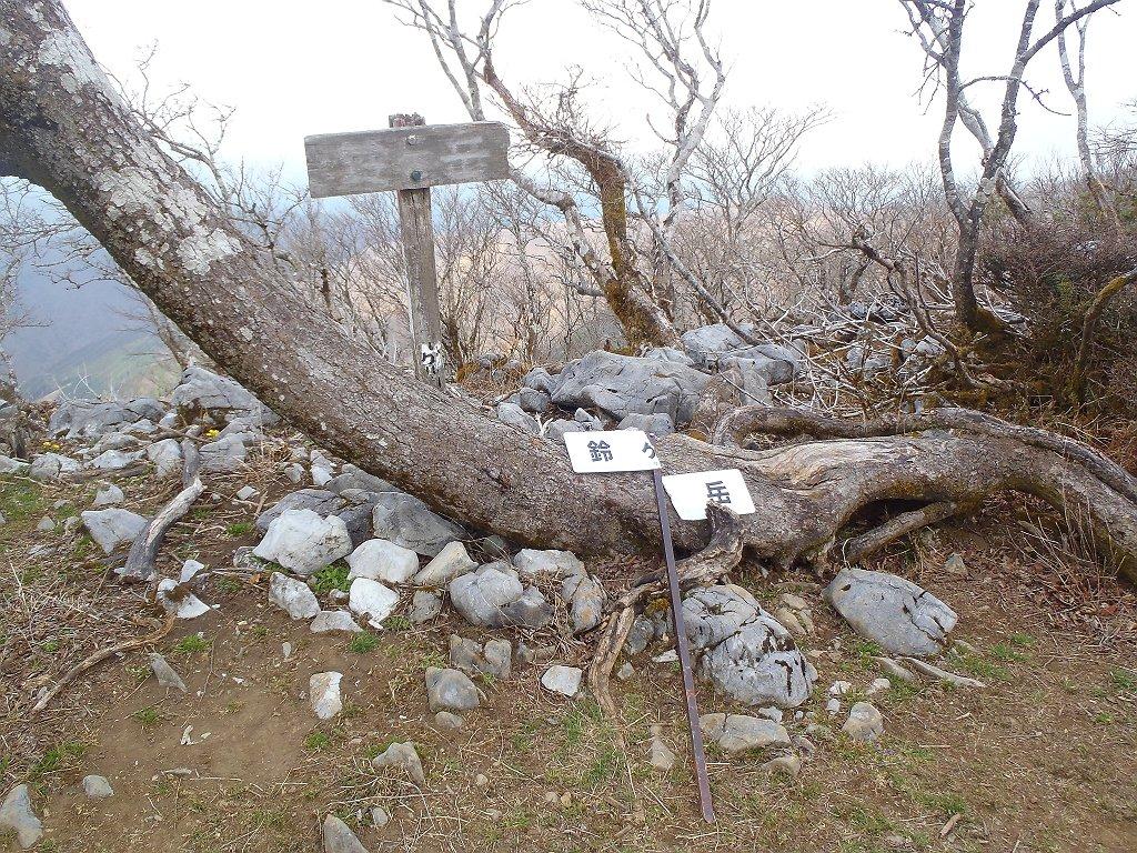 鈴ケ岳(1130m)に到着