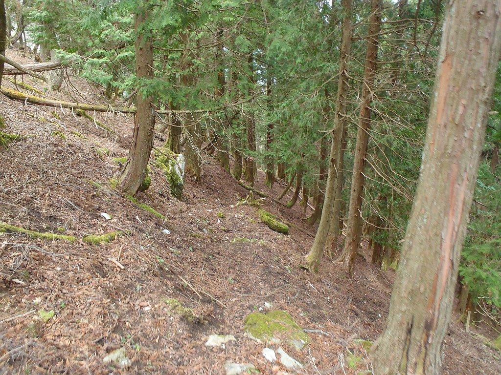 踏み跡はありながらもここから急斜面になり無理矢理降りる