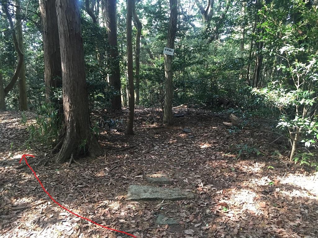 山頂から三角点は左側のこの道を降りていく