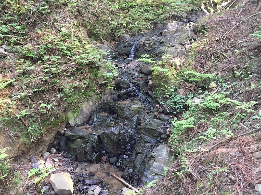 これが三の滝!?沢沿いらしい道になってきた。