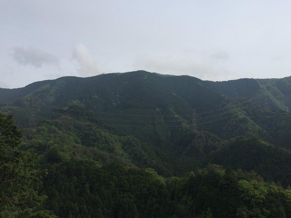 岩湧山がみえる。やっぱ高いな~