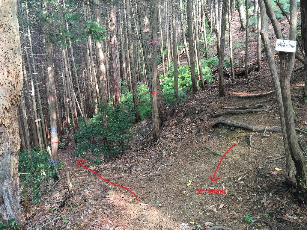 編笠のコル。東タツガ岩はここで横谷林道のほうへ少し下っていく