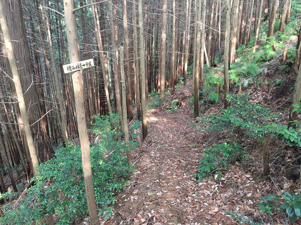 横谷林道へのプレート