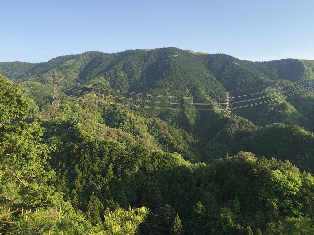 晴れて岩湧山のグリーンが綺麗にみえた