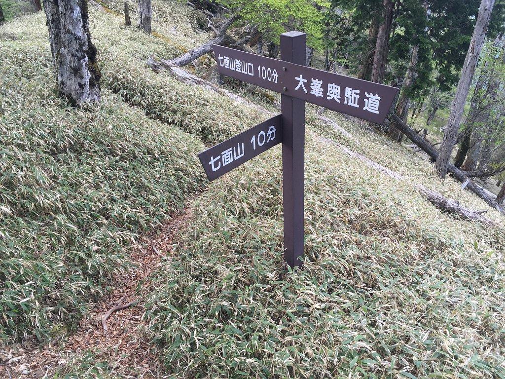 短い時間だけど急登を登って七面山のコル部に出た