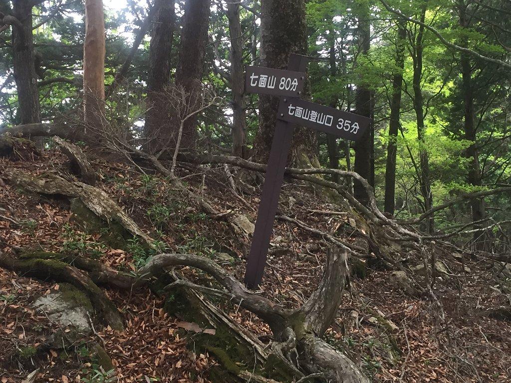 ここで尾根から外れて林道へ降りていく。35分か・・・林道まで標高差約250m
