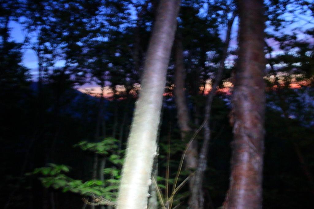 明るくなってきた!夜明けの青と赤と南アルプスのコラボレーション。ブレてるけど、色はめっちゃ綺麗だった