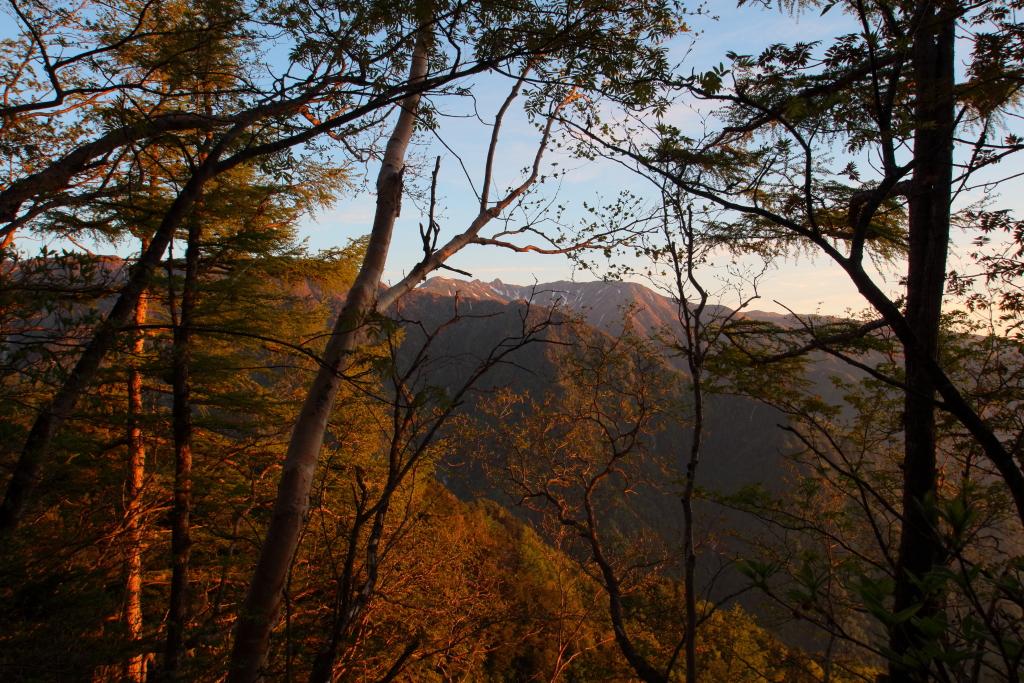 このあたり、樹林の間から宝剣岳が覗く