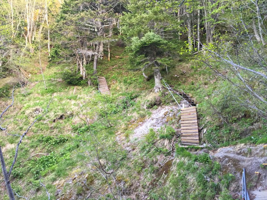 梯子の連続。これを登りつめれば、またダラダラした道が続くが、ここもそこまでしんどくなかった
