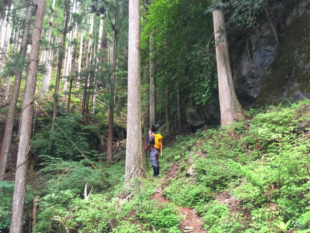 大峰らしい激しい岩。 しかしだ、とてもガスってそうにないなぁ~