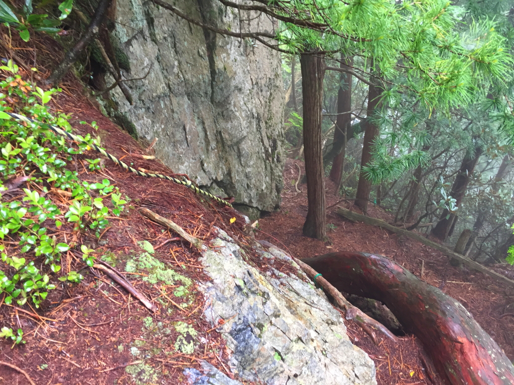 女郎ヶ岩を降りるけど、木で滑りまくりで注意して下る
