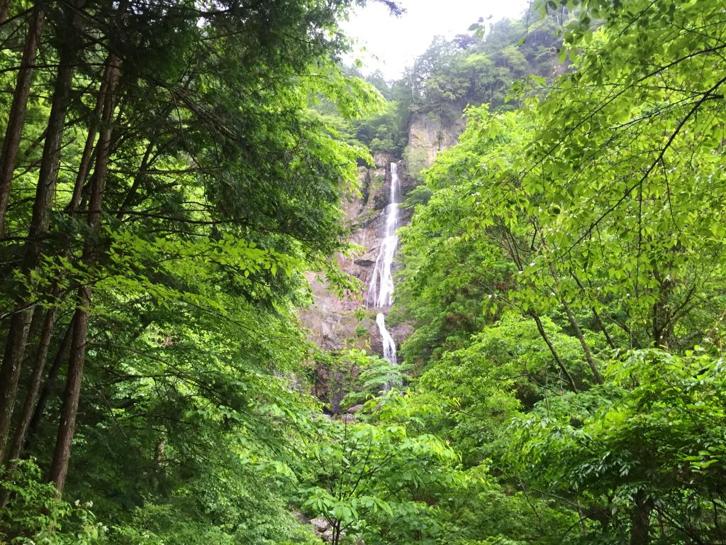 結構な落差の琵琶滝。 沢登りするときはあの真下までいこう!