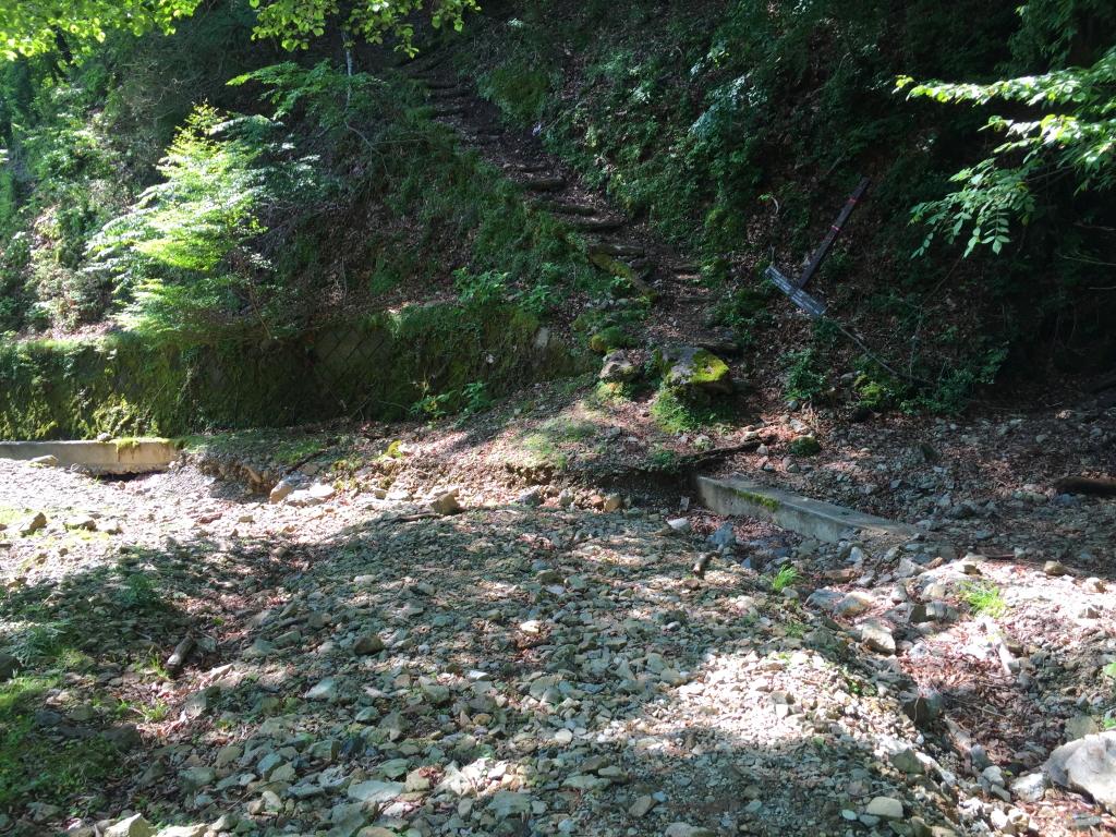 1年前は奥駆からここに降りてきたなぁ~でも今日はさらに林道を歩きます