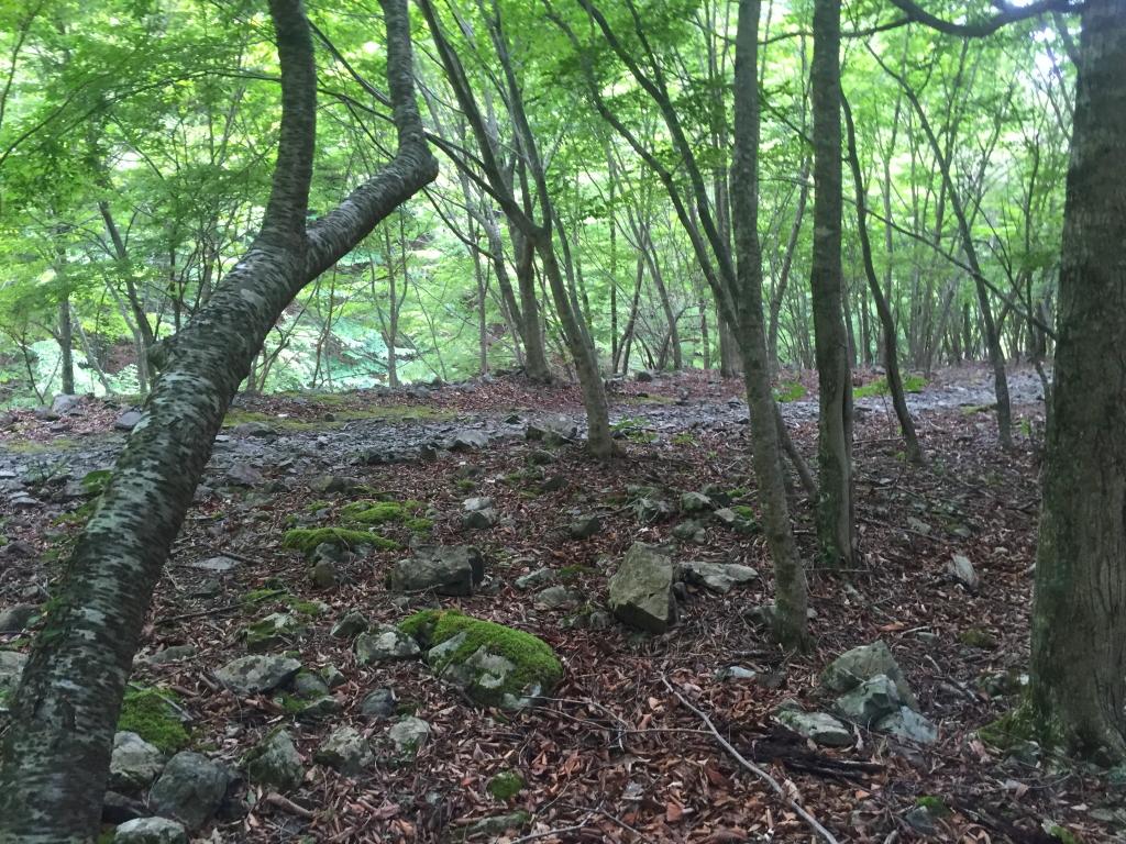 弥山への登山道との合流
