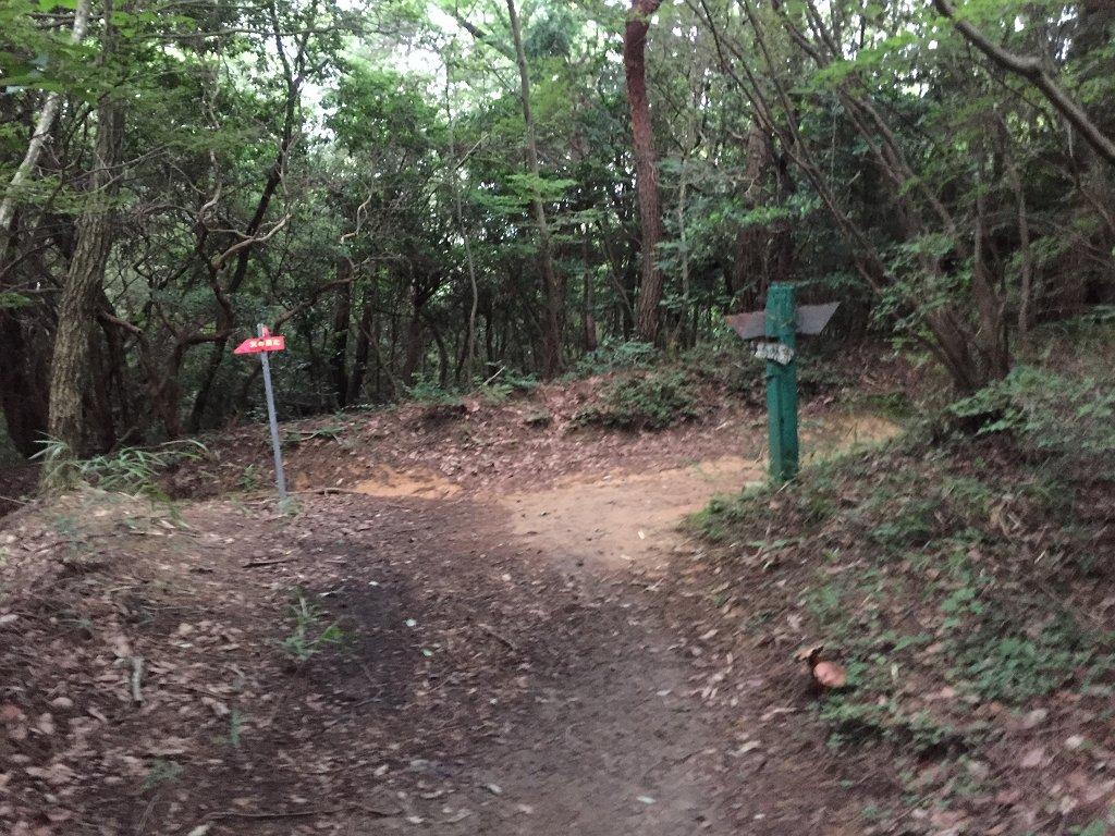ここで分岐。右に登るとごろごろ岳、左へ下るとガベの城