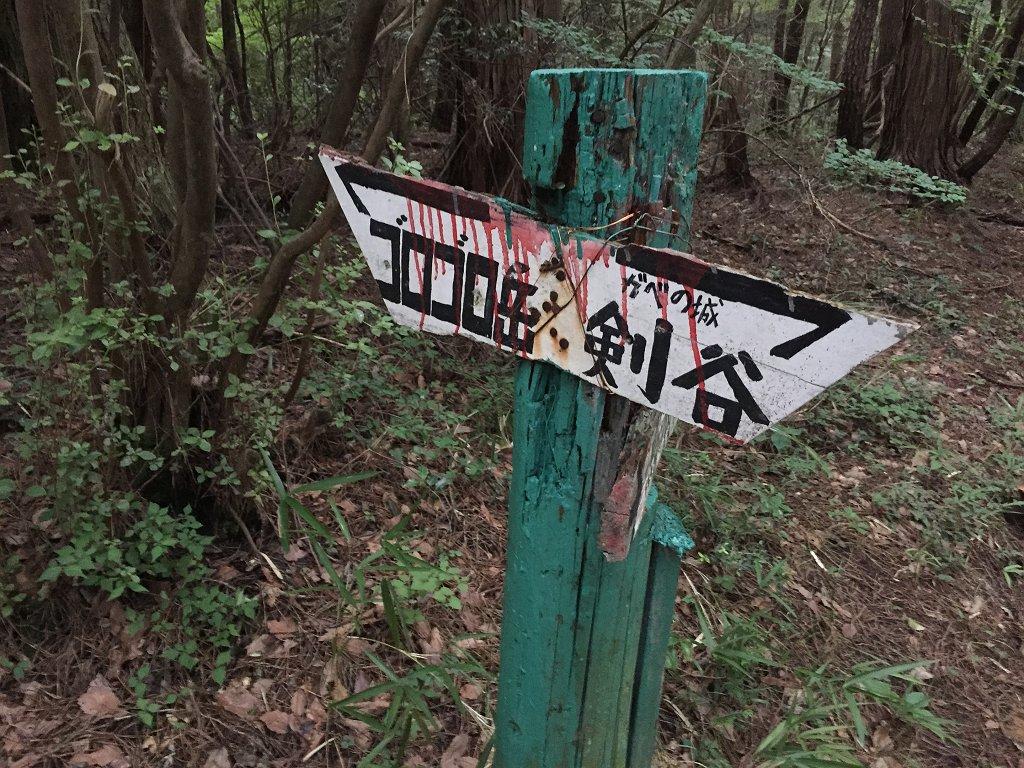 まずはごろごろ岳を目指します。ここから10分ほどかな!?