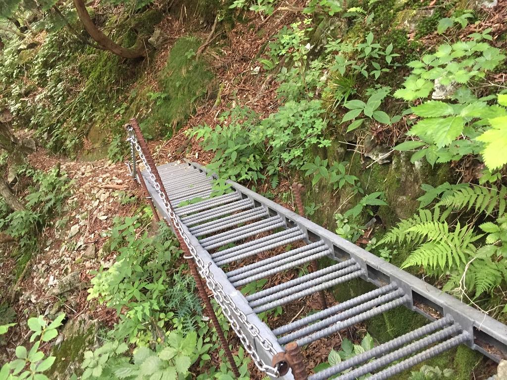 双門ルートらしい階段