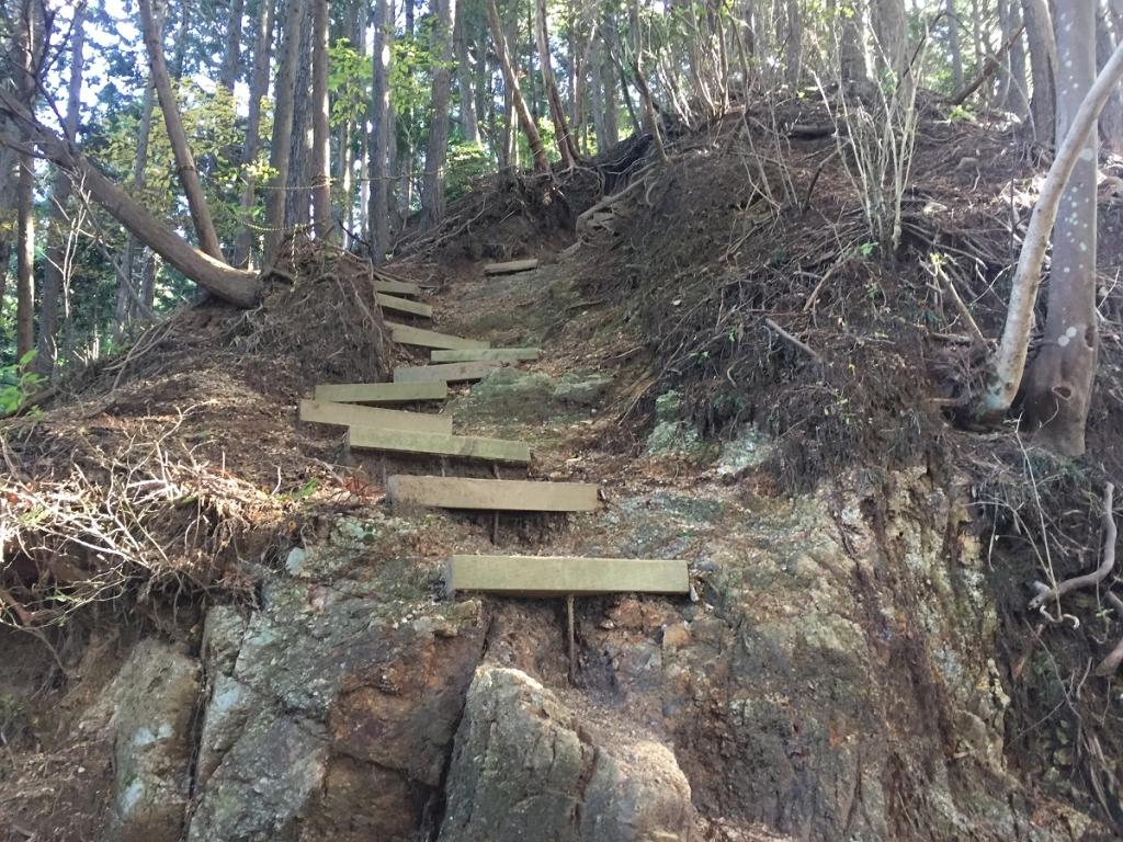 このあたりはちょい急登が続くが、階段やらちゃんと整備されていたので歩きやすかった