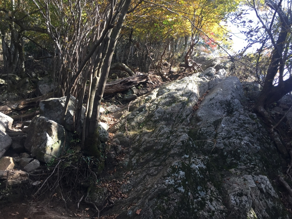 ピーク直下あたりから岩場になる