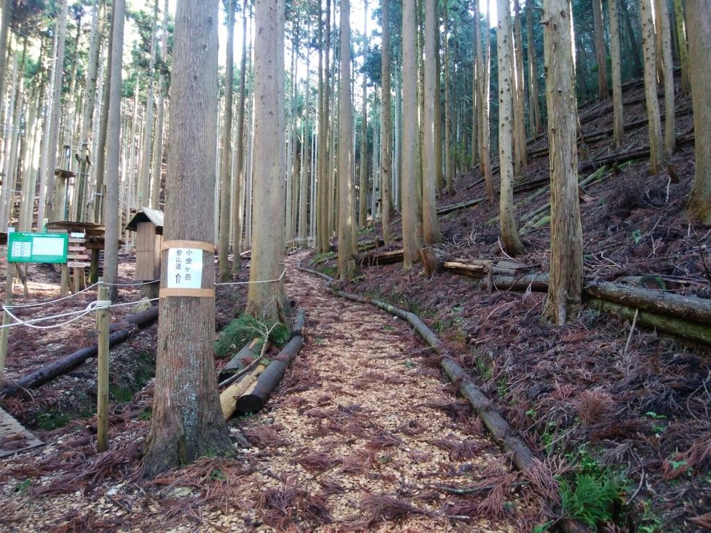 道はキッチリ整備されている。ここからしばらく谷を登っていく