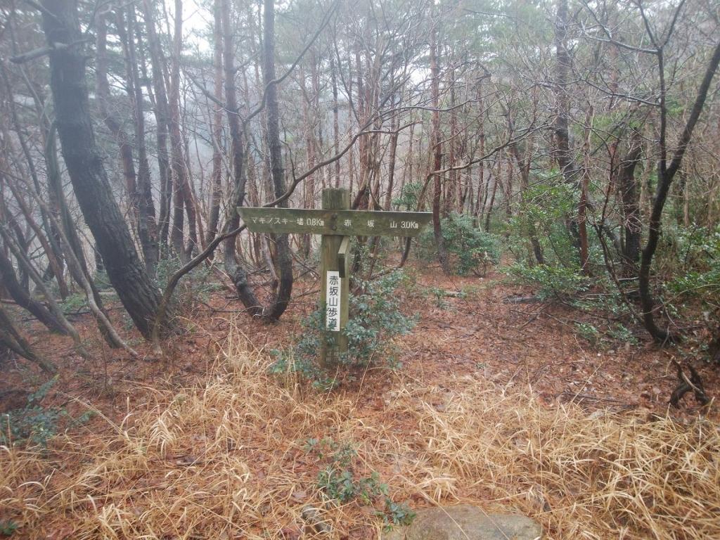 階段が終わり赤坂山まで3.0km地点