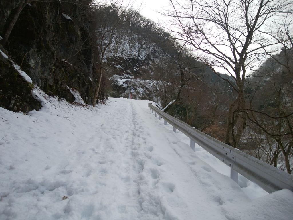 歩きにくいし長い林道だ