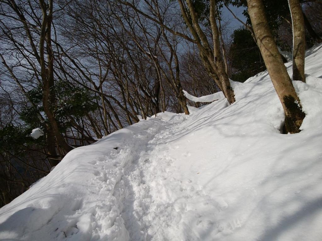 雪の量が増えてきた