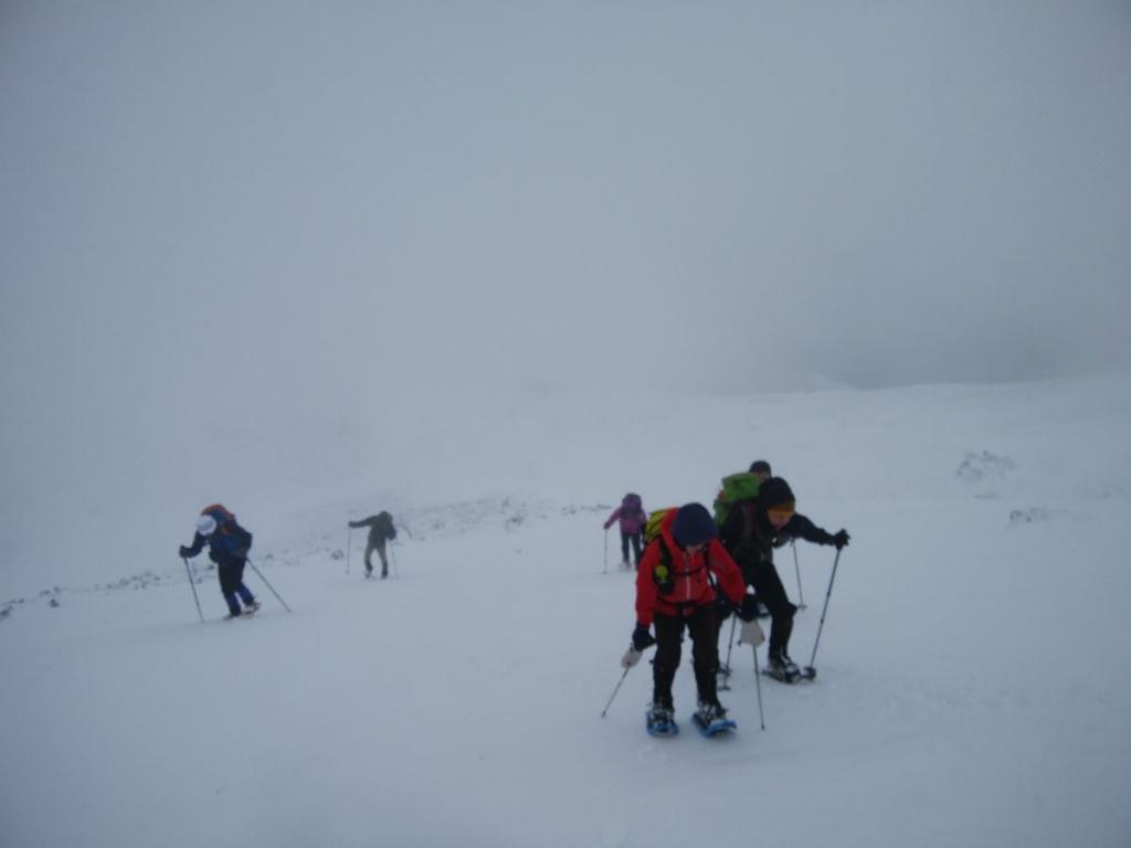 霊仙山への登り。ここもヒーヒーいいながらの登りとなった