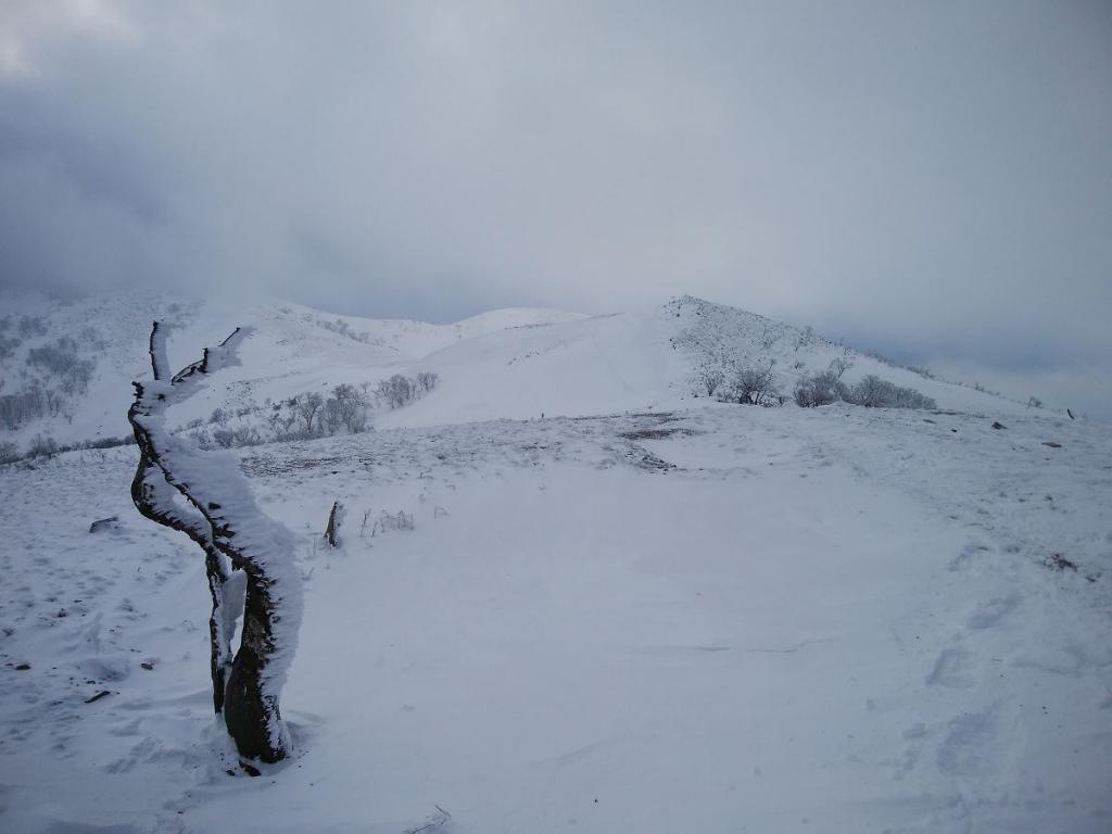 霊仙山のほうはちょいガスってるけど、稜線が綺麗に見えた。こはこれでいい
