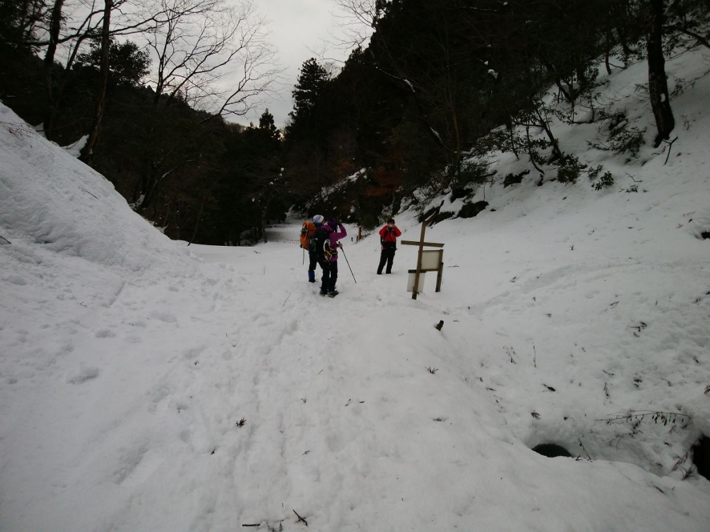 榑ヶ畑登山口に到着。ここからまた長い林道歩きなのね><