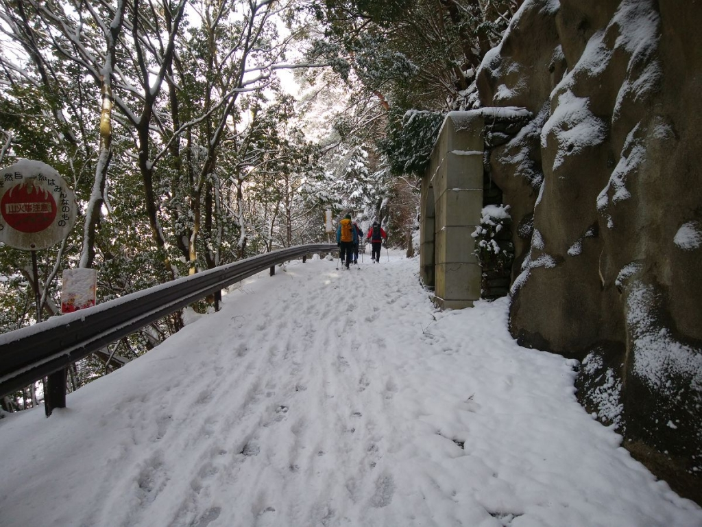 登山口までの林道歩き。先日の霊仙山の林道に比べれば歩きやすい!