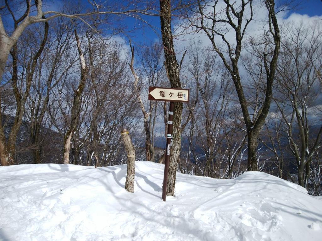 ここで急登が終わりでなだらかな稜線歩きがはじまる