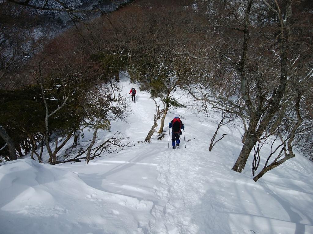 稜線はこまめなアップダウンはあるものの歩きやすい