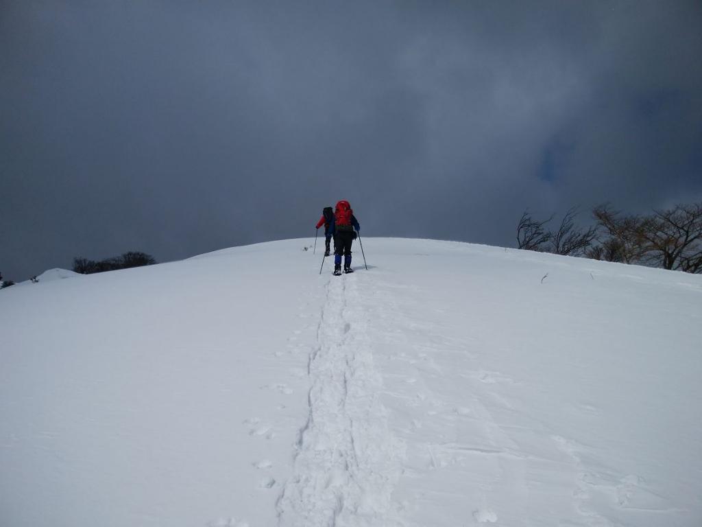 こういう道は見えてるのにつかないタイプ。それにしても気持ちいい雪道だった